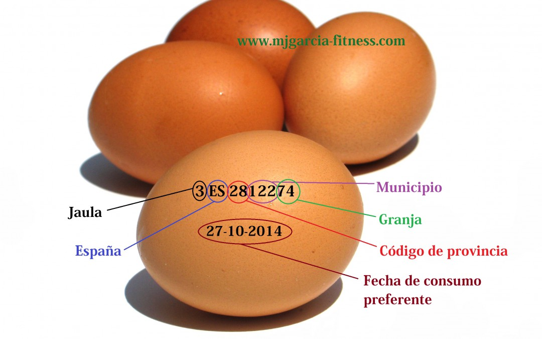 El huevo y lo que nunca se cuenta