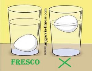 huevo fresco y huevo viejo