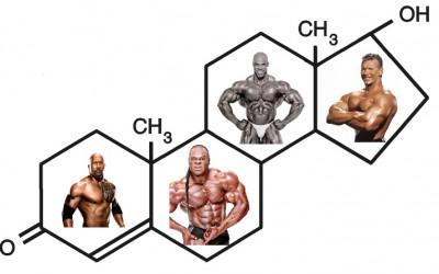 Hombres, mujeres, fitness y testosterona