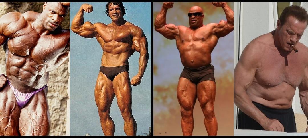 La grasa NO se transforma en músculo, ni al revés