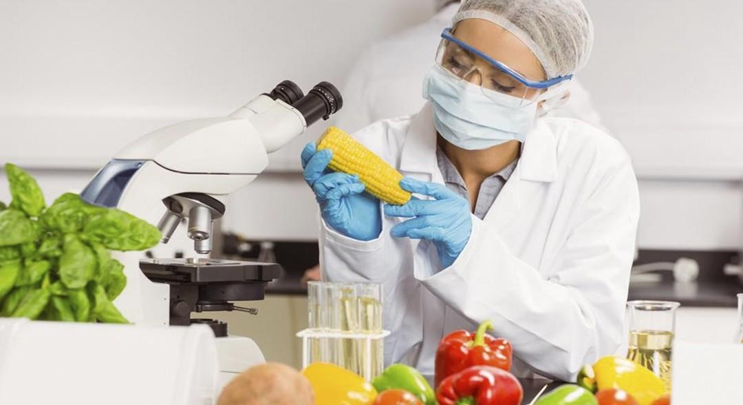 Qué es la biodisponibilidad de los alimentos
